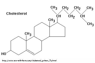 cholesterol copy