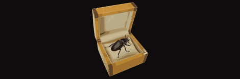 beetle in box