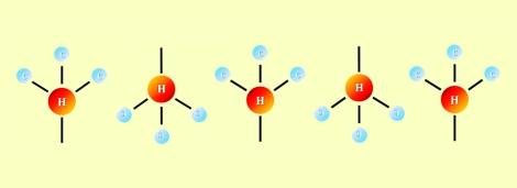 header_methyl