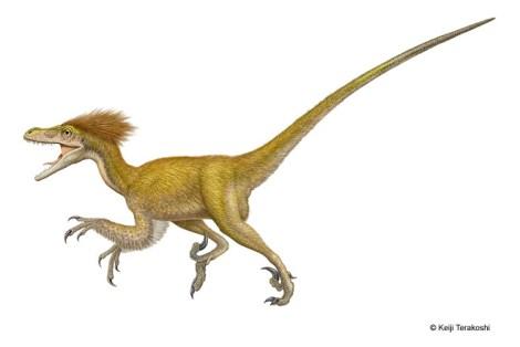 MM-deinonychus-illustration-BIG