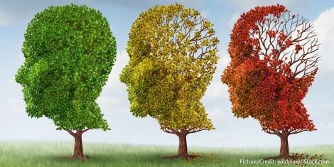 Aging-Brain.jpg